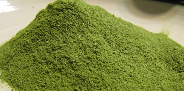 Moringa Powder [photo credit: dgsspices.com]